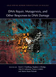 DNA Repair, Mutagenesis, and Other Responses to DNA Damage