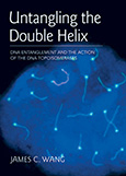 Untangling the Double HelixDNA Entanglement and the Action of the DNA Topoisomerases